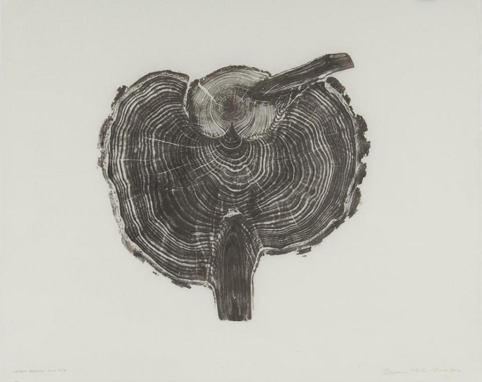 Brian Nash Gill - Woodcut, Cedar Branch, 2012