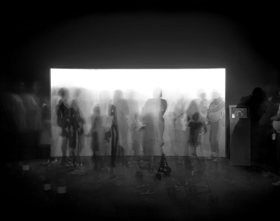 Matthew Pillsbury - Time Frame, Jellyfish, Coney Island Aquarium, 2013