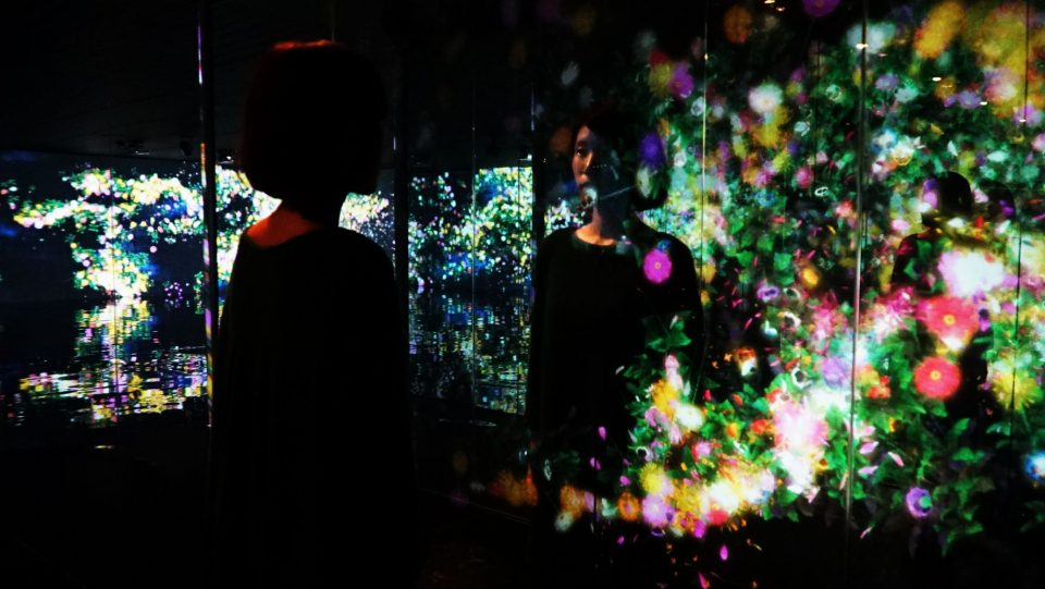 TeamLab, Flowers and People, Cannot be Controlled but Live Together – Kunisaki Peninsula, 2014